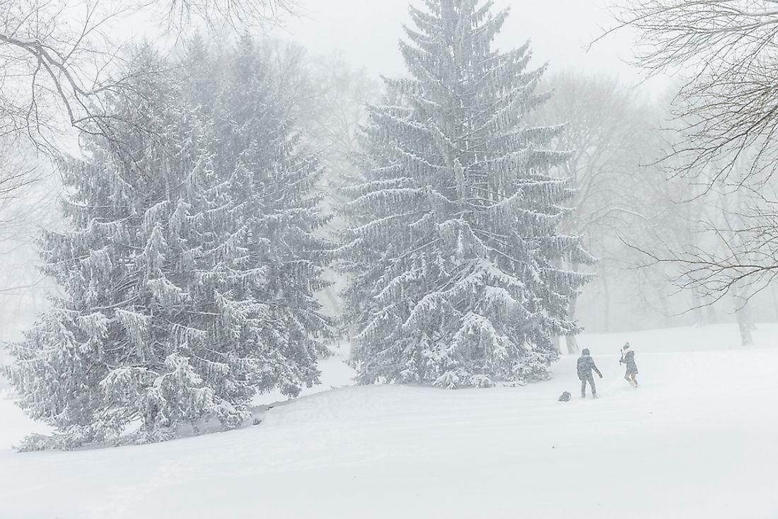 New York's Central Park under heavy snowfall from a weather bomb. Editorial credit: lev radin / Shutterstock.com