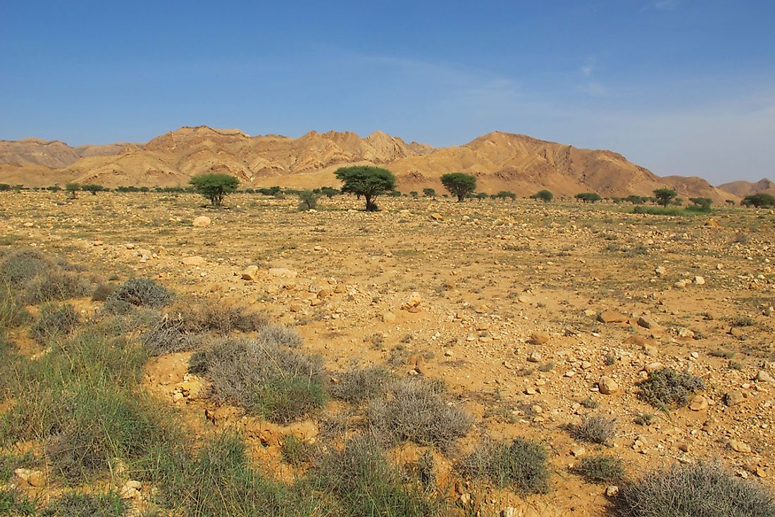 The landscape of Bou-Hedma National Park in Tunisia.