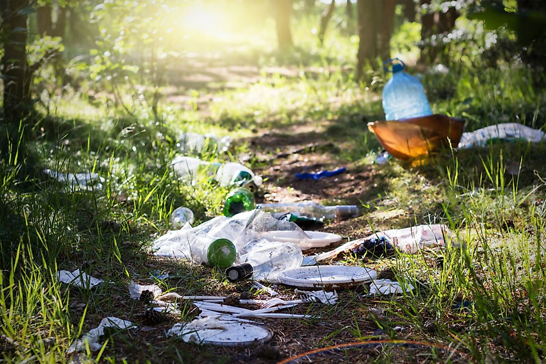 Littering can be harmful to the environment.