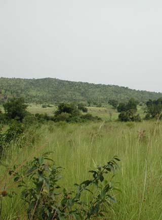 Burkina landscape
