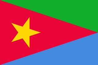 EPLF flag
