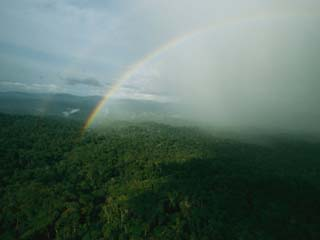 Aerial View of a Rainbow Over the Lush Forests of Gabon