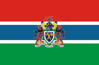 Presidential Standard of Gambia