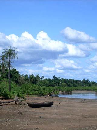 Biombo region