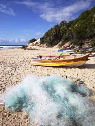 Fishing Boats and Nets on Beach, Tofo, Inhambane, Mozambique, Africa