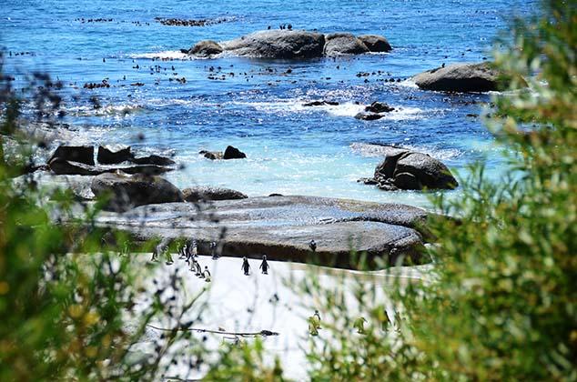 boulder beach view