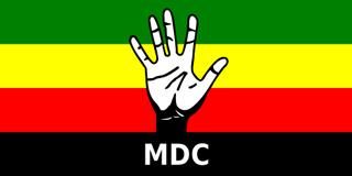 Movement for Democratic Change flag