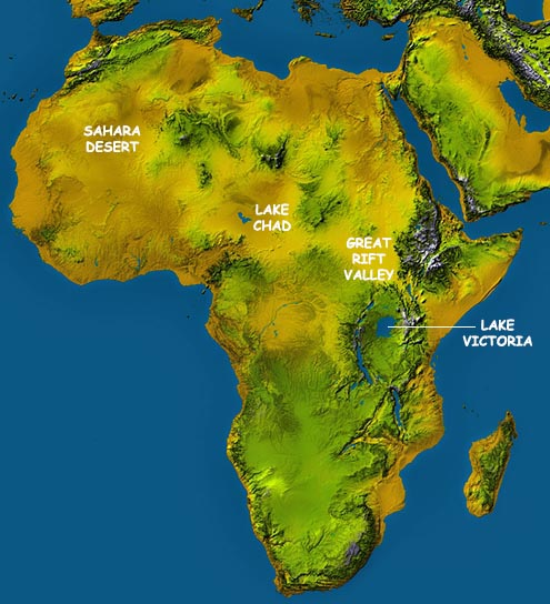 Africa map map of africa worldatlas africa topographical map publicscrutiny Image collections
