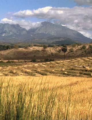 East Timor landscape