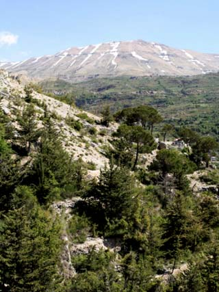 Bcharre, Qadisha Valley, UNESCO World Heritage Site, Lebanon, Middle East