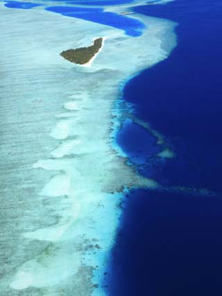 Aerial View, Maldives, Indian Ocean, Asia