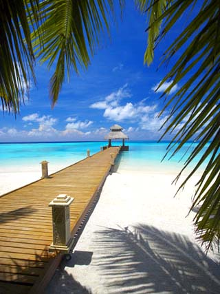 Jetty Leading Out to Tropical Sea, Maldives, Indian Ocean