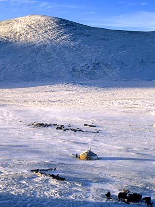 Bayan-Olgii Province, Yurts in Winter, Mongolia