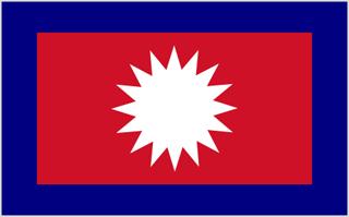 Mustang flag