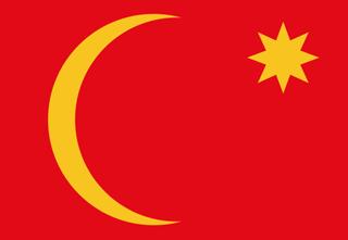 Ha'il flag