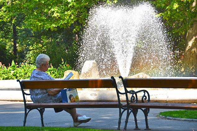sunday in the park vienna