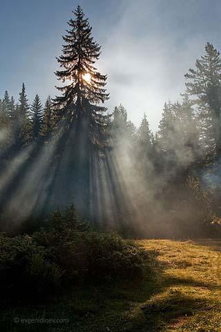 bulgaria sunrise
