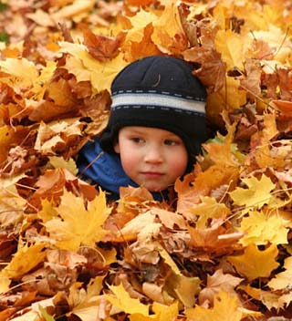 Child Playing in Leaves in Kadriorg Park, Tallinn, Estonia