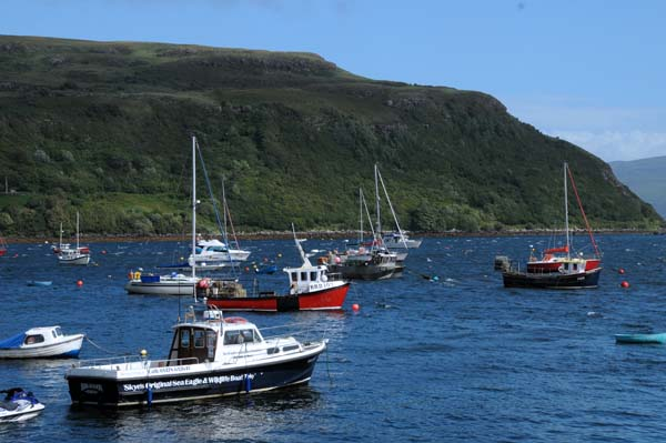 harbor boats in portree