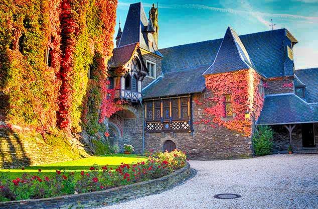 cochem castle flowers