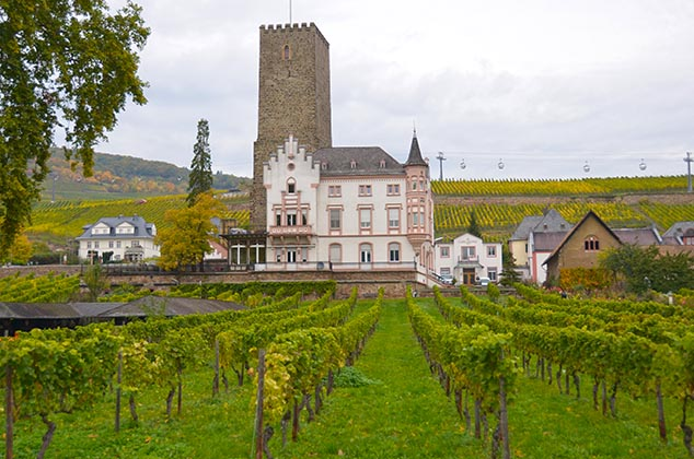 winery Rudesheim Germany