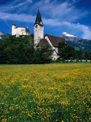 Field of Flowers in Front of Burg (Castle) Gutenburg and Church, Balzers, Liechtenstein