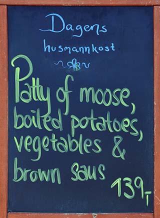 moose patty norway