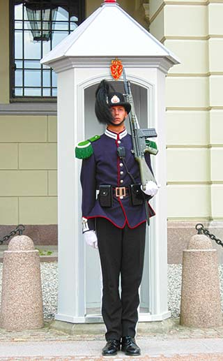 royal palace guard oslo norway