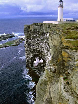 Lighthouse and Cliffs at Noup Head Rspb Reserve, Westray, Orkney Islands, Scotland