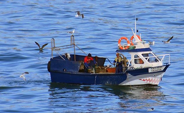 fishing boats lisbon