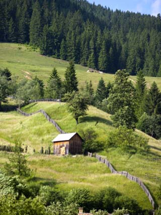 Countryside Near Suceava, Bucovina, Romania, Europe