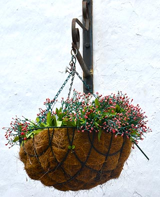 hanging basket of flowers Vejer de la Frontera spain