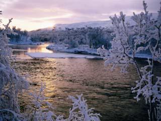 Snowy Riverscape, Vindelfjallen Nr, Umea, Sweden