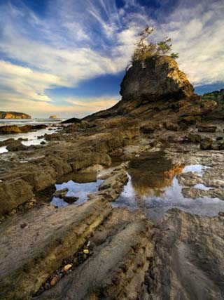 Rocky Shore with Tide Pools at Low Tide, Costa Rica