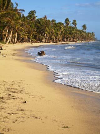 Iguana Beach, Little Corn Island, Corn Islands, Nicaragua