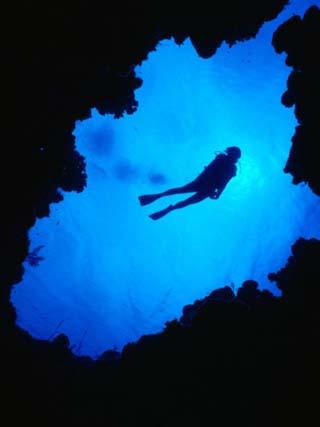 Diving off Limestone Platform into Blue Hole at Bat Cave, Gene's Bay, Bahamas