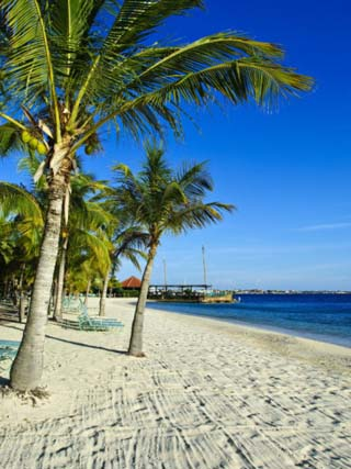 Bonaire, Netherlands Antilles, West Indies, Caribbean, Central America