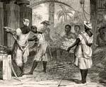 caribbean slaves