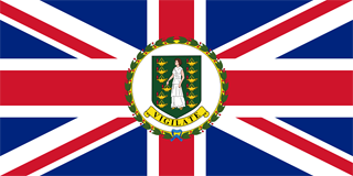governor ensign flag