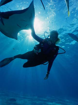 Diving at Stingray City on Grand Cayman, Grand Cayman, Grand Cayman, Cayman Islands