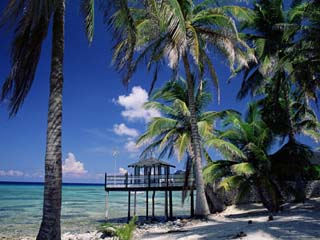 Waterside Restaurant Beneath Palms, Old Man Bay, Grand Cayman, Cayman Islands, West Indies