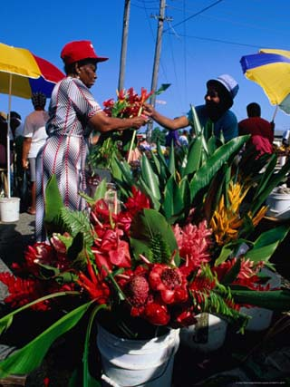 Selling Flowers at the Roseau Market, Roseau, Dominica