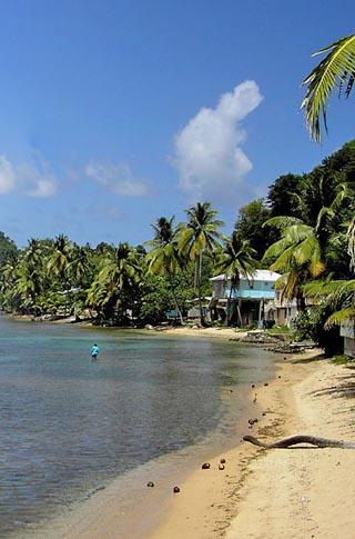dominica beach scene