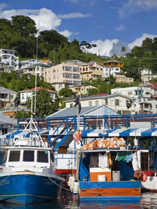 Fishing Boats in Carenage Harbour, St. George's, Grenada, Windward Islands, West Indies