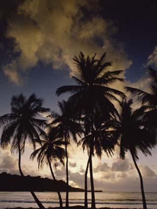 Sunrise at La Sagesse Bay over Marquis Point, Grenada