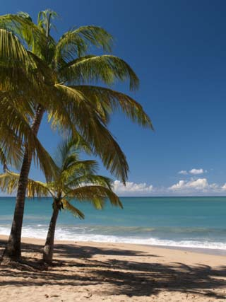 La Perle Beach, Deshaies, Basse-Terre, Guadeloupe, French Caribbean, France, West Indies