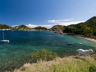 Le Bourg, Iles Des Saintes, Terre de Haut, Guadeloupe, French Caribbean, France, West Indies