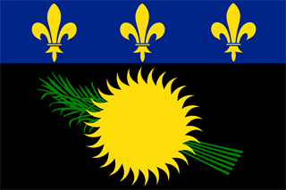 Unofficial Flag of Guadeloupe