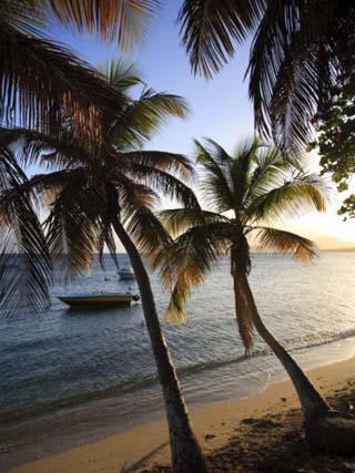 Vieques Island, Esperanza Bay, Puerto Rico