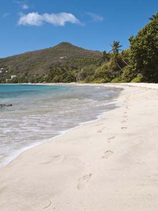Friendship Bay Beach, Bequia, St. Vincent and the Grenadines, Windward Islands, West Indies
